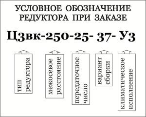 Условное обозначение при заказе специального кранового редуктора типа В / Ц3ВК