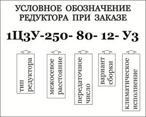 Условное обозначение при заказе редукторов 1Ц3У